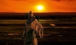 500 Nations: Die Geschichte der Indianer - Limitiert (3DVDs)