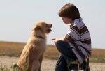 Mein Freund Smitty - Ein Sommer voller Abenteuer (DVD)