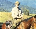 Archer - Abenteuer eines Rennpferdes (DVD)