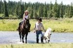 Heartland - Paradies für Pferde, Staffel 2 (Neuauflage)