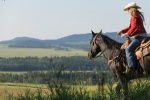 Heartland - Paradies für Pferde, Staffel 6 (Neuauflage)