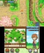 Harvest Moon 3D: Geschichten zweier Städte (3DS)