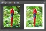 FotoSketcher für Einsteiger