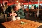 David Attenborough: Tierische Evolution (DVD)