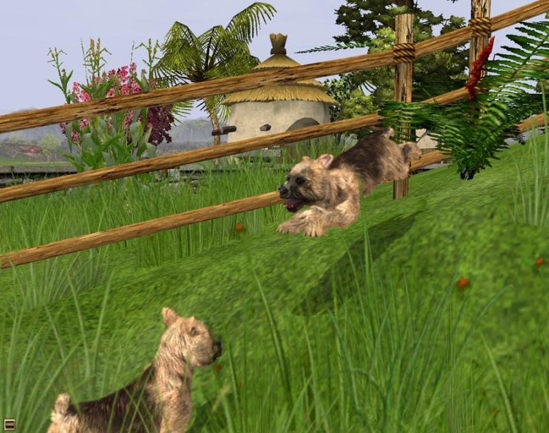 Wildlife Park: Meine Haustiere - Jetzt wird es niedlich (PC)